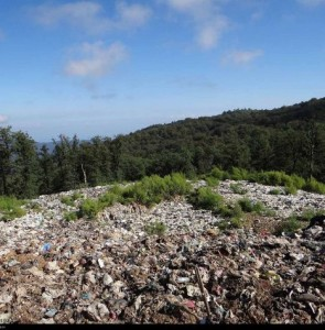 'Waste problem in Mazandaran to be resolved in 3 years'