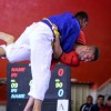 Iran wins two medals at World Alysh C'ships